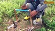 Awesome Quick Bird Trap Using PVC Rolling Snare Bird Trap - How To Make Rolling Snare Bird Trap