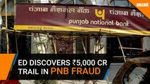 ED discovers Rs 5,000 crore trail in PNB fraud