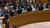 Birleşmiş Milletler Güvenlik Konseyi Toplantısı'nda gergin anlar yaşandı