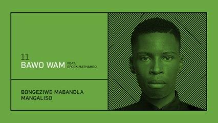 Bongeziwe Mabandla - Bawo Wam