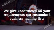 Free email campaign along with B2B email list purchase EMEA