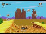 Desert Demolition Starring Road Runner And Wile E. Coyote - Sega Genesis © 1994 Sega