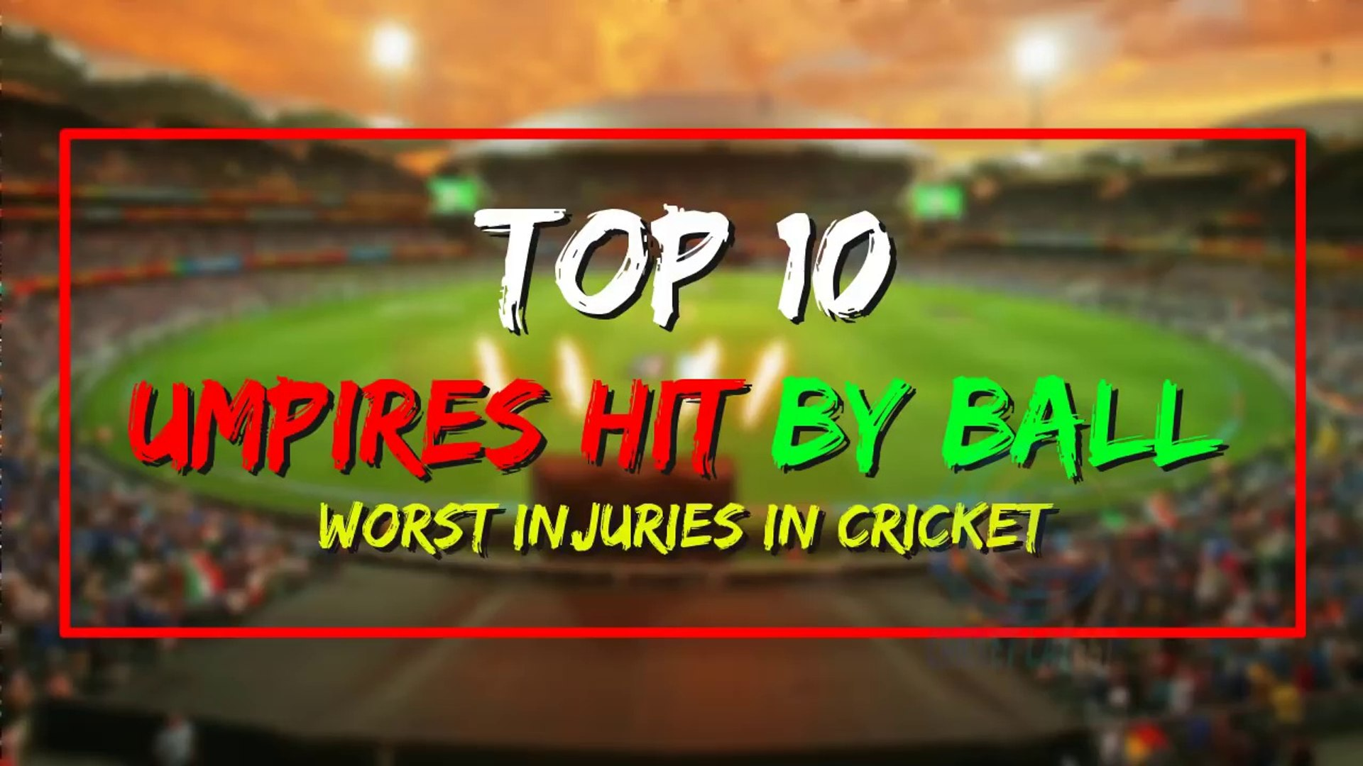 #10 Umpires Hit by Ball in Cricket - Cricket Latest