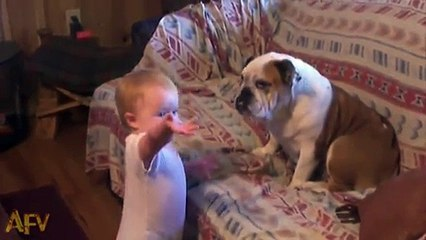 This adorable baby is having an argument... with a dog! - Vidéo dailymotion