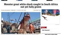 Megalodon Caught! Selfie Shark Attack!! and Shark Vs Shark!!! [Beaver News]