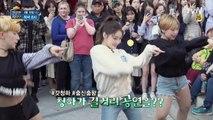 신입기사 춤신 청하! 그녀가 길거리 공연을 하게 된 사연은?