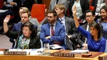 Rusya'nın kınama tasarısı Birleşmiş Milletler Güvenlik Konseyi'nce veto edildi
