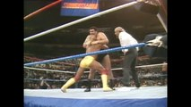 Hulk Hogan and Randy Savage (with Miss Elizabeth) vs André the Giant and Ted DiBiase Summerslam 1988