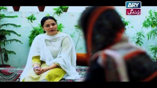 Mein Mehru Hoon Ep 100 & 101 - on ARY Zindagi in High Quality 16th April 2018
