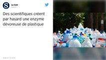 Une enzyme qui dévore le plastique créée par hasard par des scientifiques.