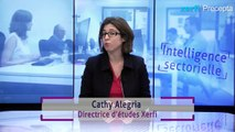 Les stratégies des conseillers en gestion de patrimoines indépendants [Cathy Alegria]