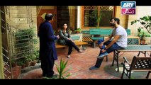 Mein Mehru Hoon Ep 102 & 103 - on ARY Zindagi in High Quality 17th April 2018