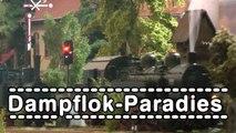 Dampflok Paradies Spur 0 Modelleisenbahn - Ein Video von Pennula für alle Freunde von Modellbahnen und Modelleisenbahnen