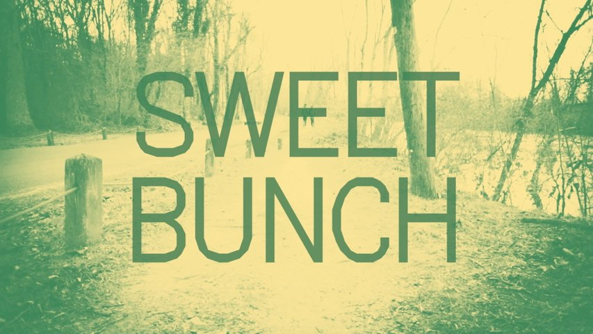 Andy Jenkins - Sweet Bunch