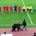 Un ours donne le coup d'envoi d'un match de foot en Russie !