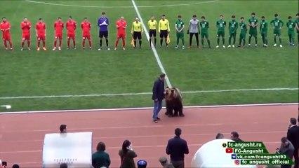 Un ours fait sensation en donnant le coup d'envoi lors d'un match de foot en Russie