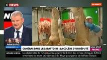EXCLU - Caméras dans les abattoirs: Le député Olivier Falorni lance en direct un appel à Emmanuel Macron - VIDEO