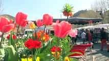 Alpes-de-Haute-Provence : le soleil donne le sourire sur le marché de Digne-les-Bains