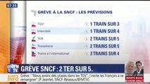 Grève SNCF: TGV, TER, Transilien… les prévisions de trafic de ce jeudi