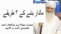 Hazrat Peer Zulfiqar Ahmad Naqshbandi About His Grandson