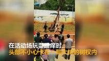 Une girafe se coince le cou dans un arbre