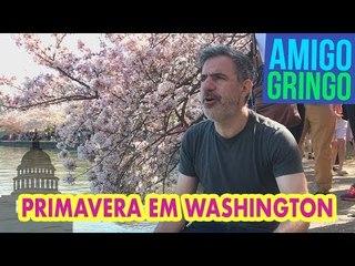 AMIGO GRINGO EM WASHINGTON!
