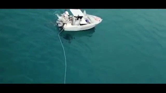 Terrifying Drone footage of Great White Shark Dragging Boat Caught on Tape - Official CR 2.0 2018