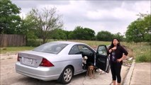 Surprise en train d'abandonner ses 4 chiens sur un parking de San Antonio, au Texas