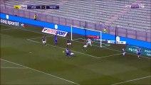 Résumé Saint-Etienne (ASSE) - Troyes (ESTAC) but Robert Beric 2-1