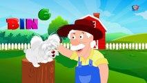 Bingo chanson de chien - enfants comptines - chansons d'enfants en français