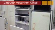 Veteriner Kliniği Anadolu Yakası Çekmeköy Ümraniye Nöbetçi