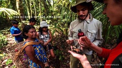 Munduruku : une expérience multisensorielle - Keynote VF