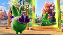Sunny Bunnies - Chick-a-Bunny (Full Episode) Sunny Bunnies *Cartoons for Children*