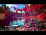 Deep Relax Meditation Music : Delta Waves Relaxing Music, Soothing Music, Calming Music