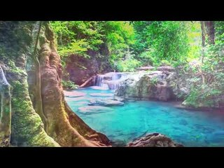 Deep Meditation : Healing Oboe Music, Improve Memory, Spa & Massage Music, Deep Relax Music