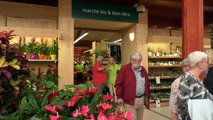 Alpes de Haute-Provence : l'enseigne Botanic inaugure son Marché Bio à Manosque