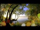 Chill Out Relax Music - Musique calmante méditative, Paix intérieure, musique apaisante