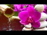 Profonde Méditation Musique: Relaxation Flûte, Musique Calmant, Musique douce