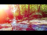 Spa relaxant Chill Out Music, Love Every Moment of Life - Ambient Lounge Chill Out Music