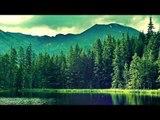 30 Minute Relaxation Flûte, Musique douce, Chillout calmant Musique, Relax Sounds Spa Eau