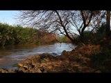 Relaxing Nature Sounds Musique: Morning Meditation, Musique d'étude, Spa Soft Piano Musique
