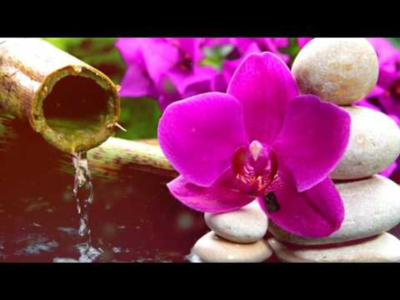 Глубокий Медитация Музыка: Релаксация флейта музыка, успокаивающий музыка, мягкая музыка