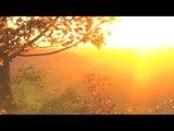 Beste entspannende Flötenmusik mit Natur Sound, Reiki, Meditation, Zen Musik Morgen Musik