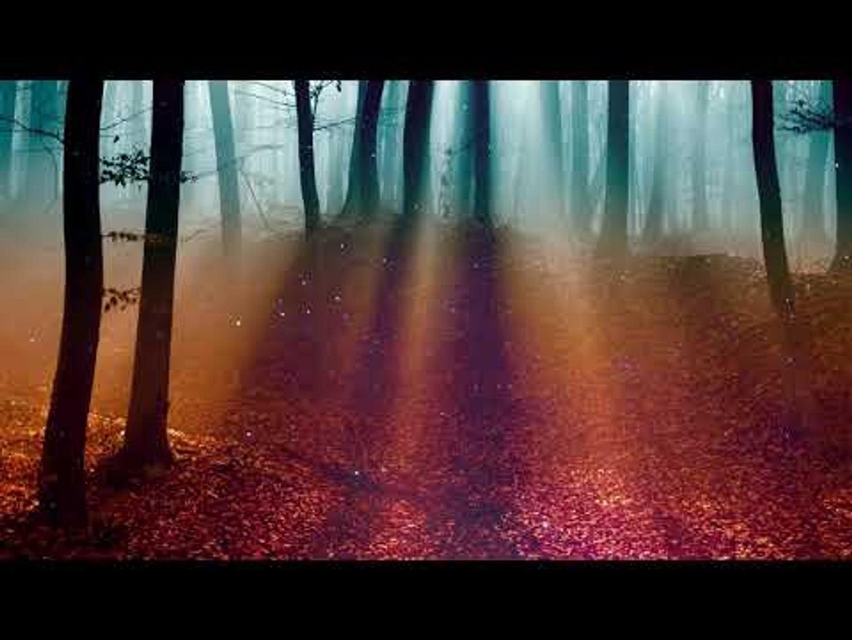 Расслабляющая кельтская музыка, Вечерний бриз, Осенний лес - Расслабляющая музыка