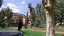 Maroc, FESTIVAL DU PARKOUR À MARRAKECH