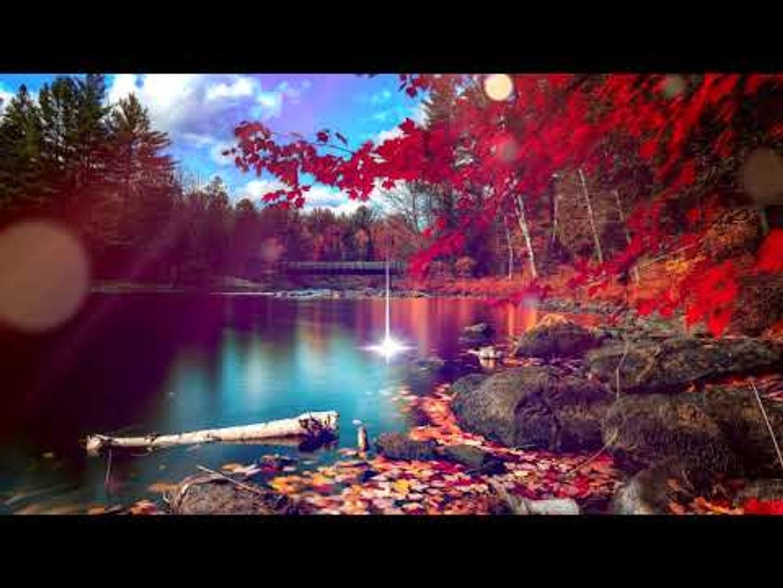 Deep Relax Meditation Music: Delta Waves Расслабляющая музыка, успокаивающая музыка