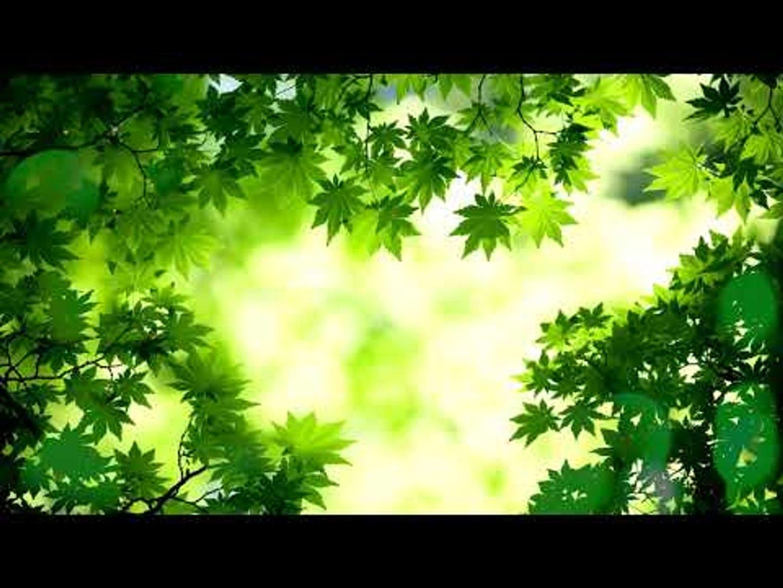Мягкая, медитация Глубокая сонная музыка: музыка внутреннего мира, расслабляющая музыка