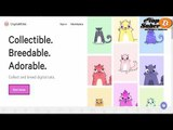O Que é Crypto kitties - Primeiro Jogo Na Plataforma da Ethereum - Veja O que é Crypto kitties