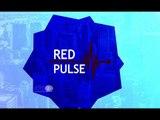 Que é Moeda Virtual Red Pulse e Como Funciona - Plataforma de Análise de Investimentos Red Pulse RPX