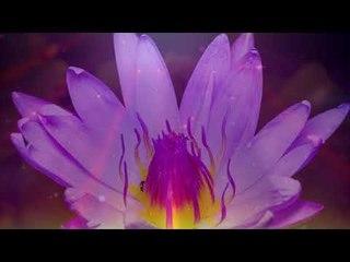 Beruhigende und friedliche Sonnenuntergang Musik, entspannende Instrumentalmusik Piano